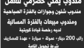 وظائف شاغرة لمندوب يمني حضرمي