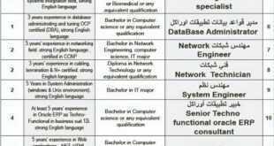وظائف شاغرة في شركة متخصصة في مجال تقنية المعلومات